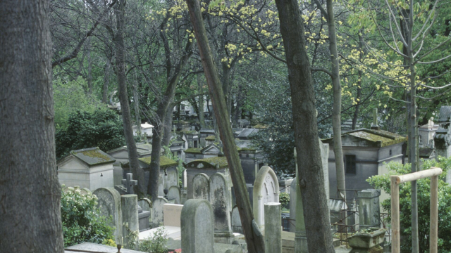 Image of a busy cemetery