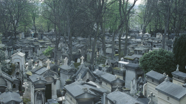 Image of a full cemetery